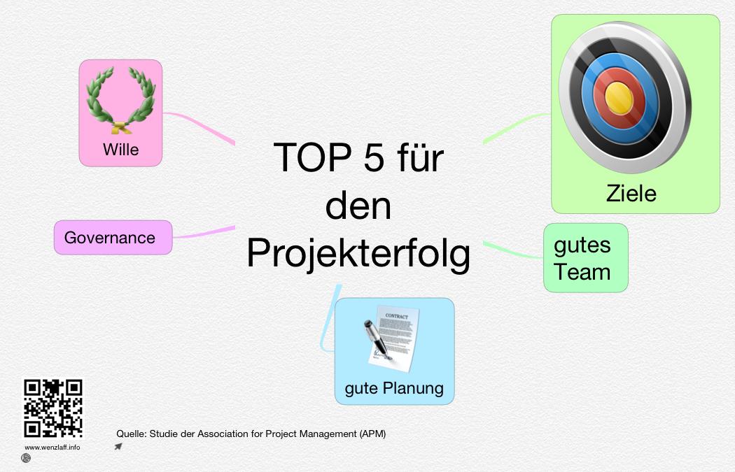 TOP5-Projekterfolg
