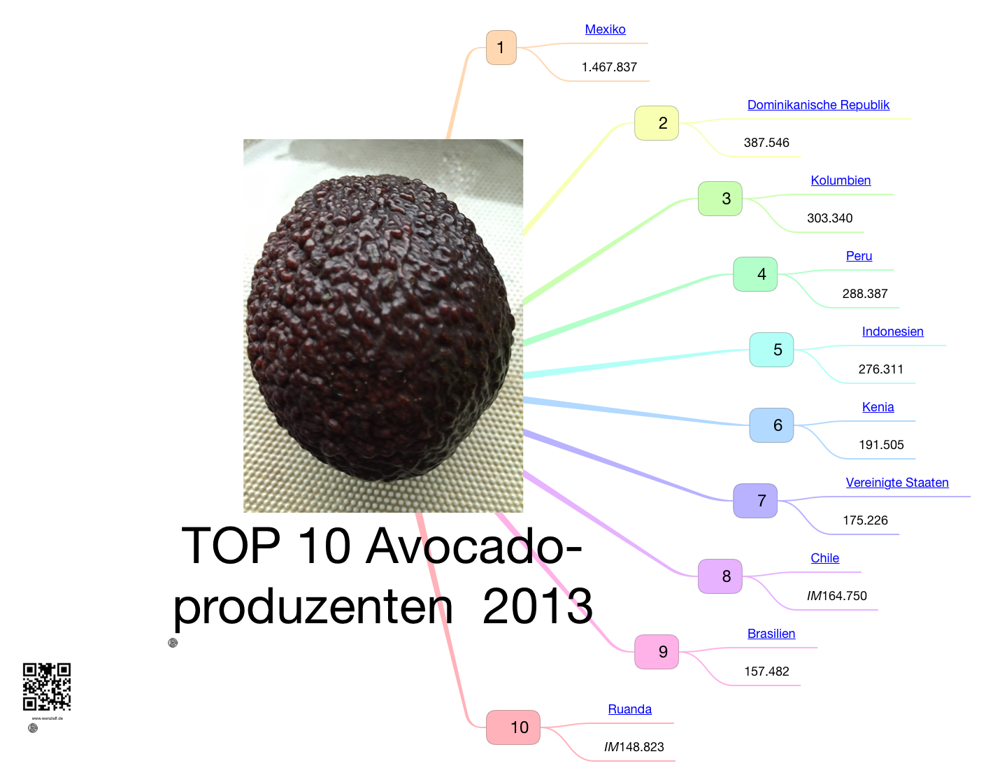 top-10-avocadoproduzent